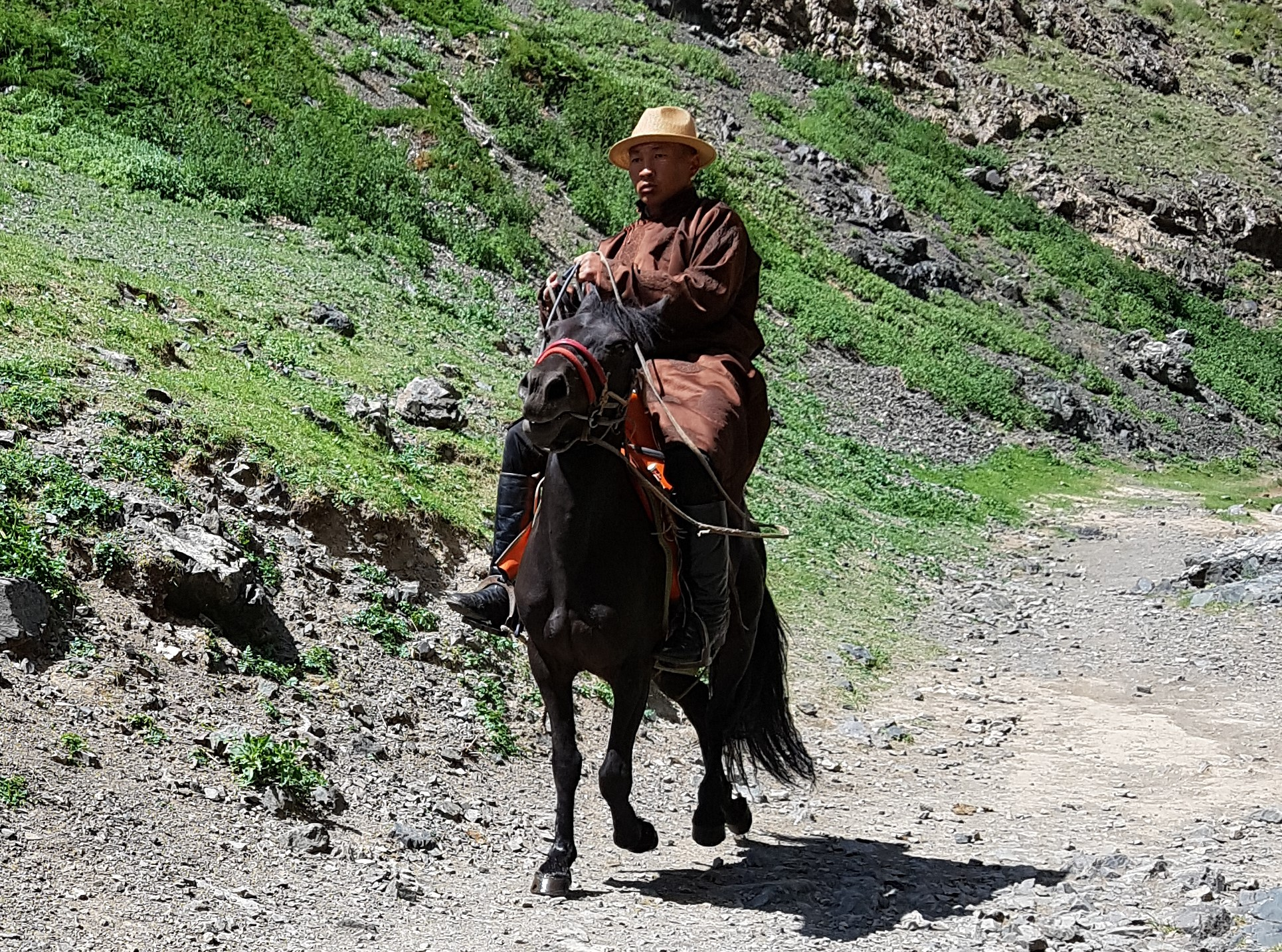 A lonely herder on his horse in the Yolo gorge