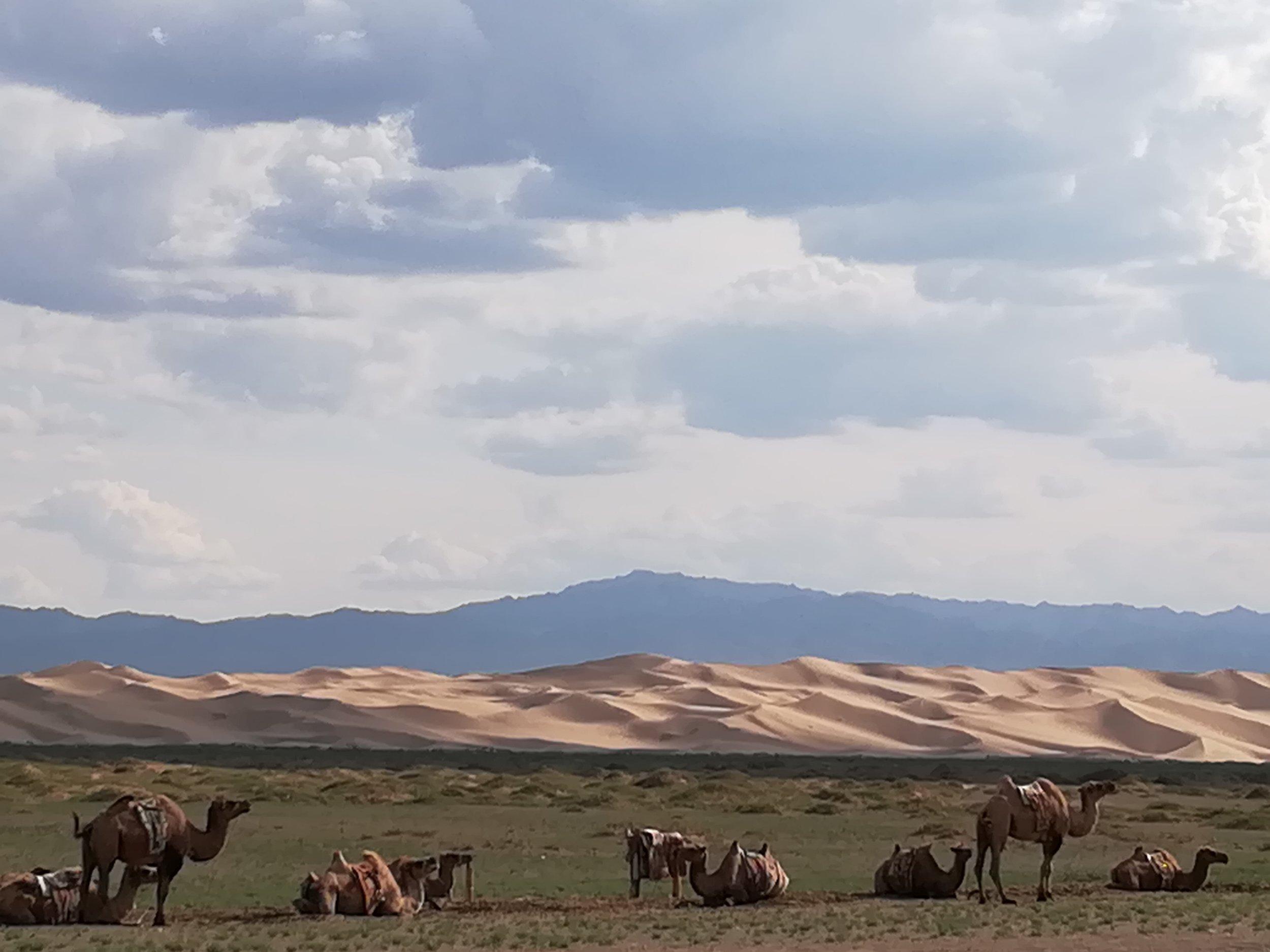 Sand dunes on the horizon