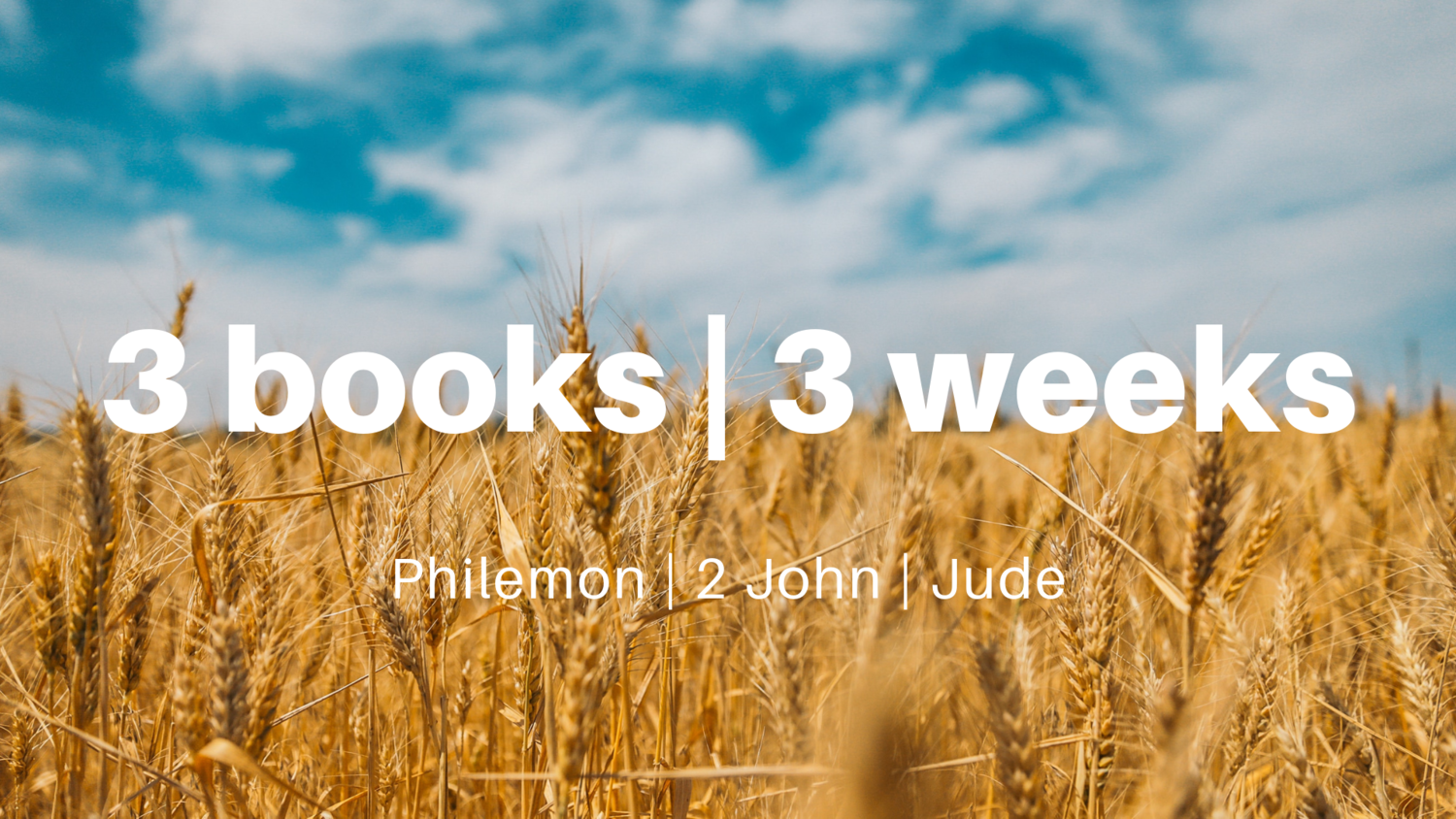 3+books+_+3+weeks.png