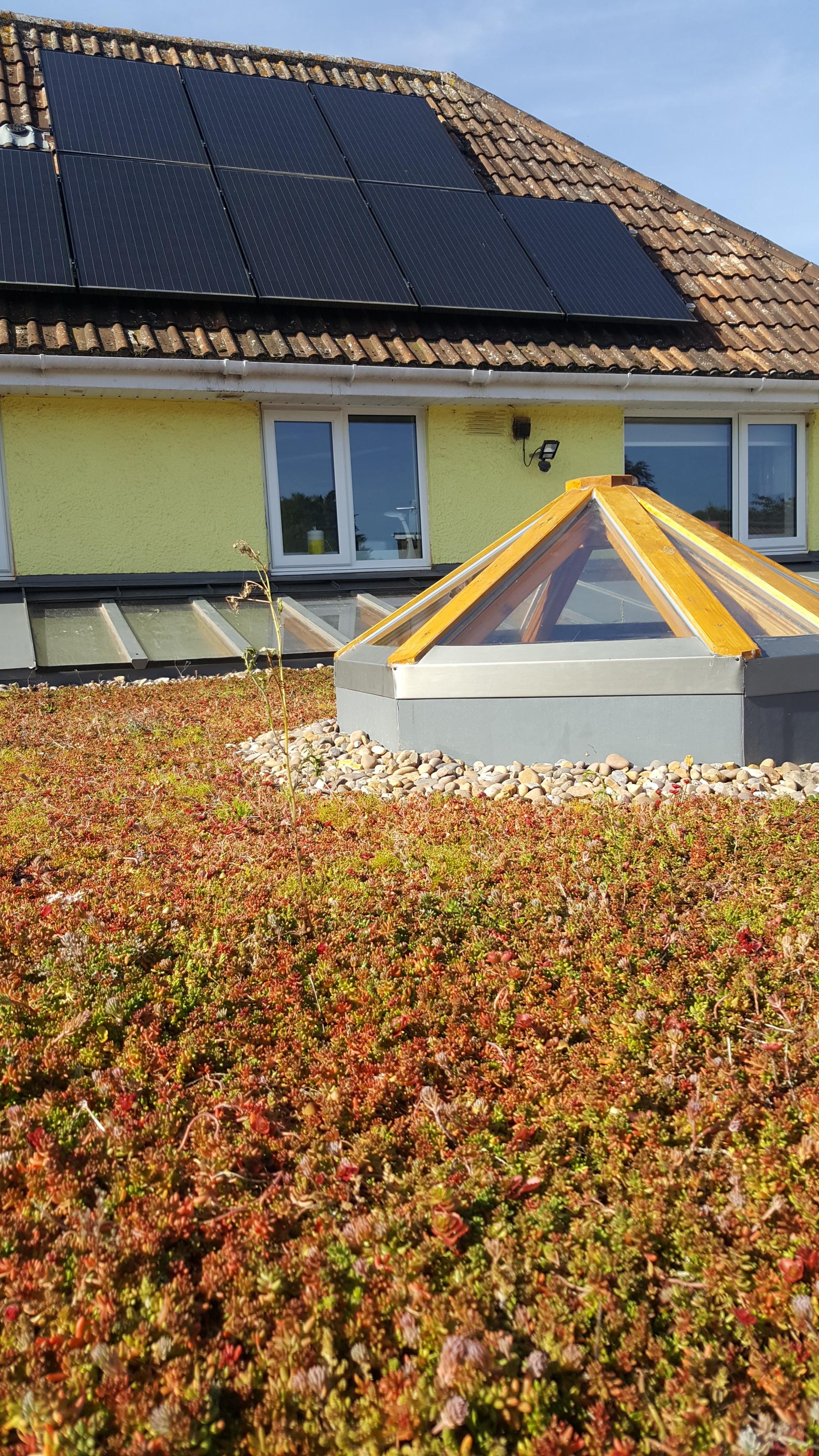 living roof.jpg