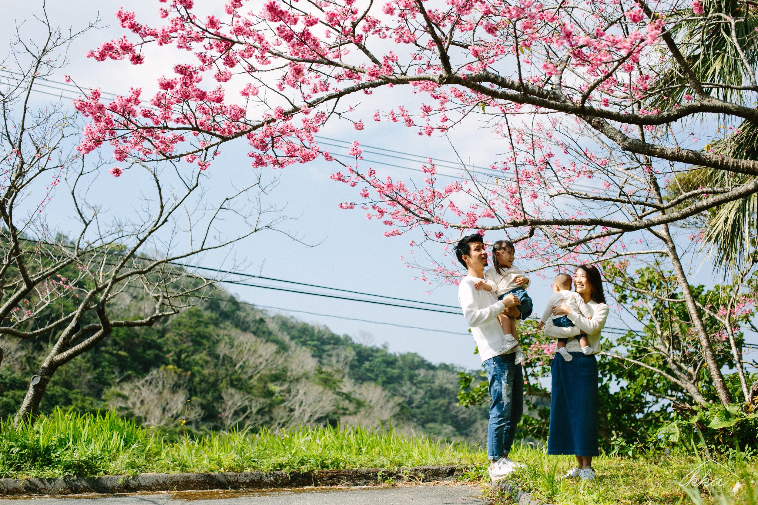 沖縄桜ファミリーフォト-1.jpg