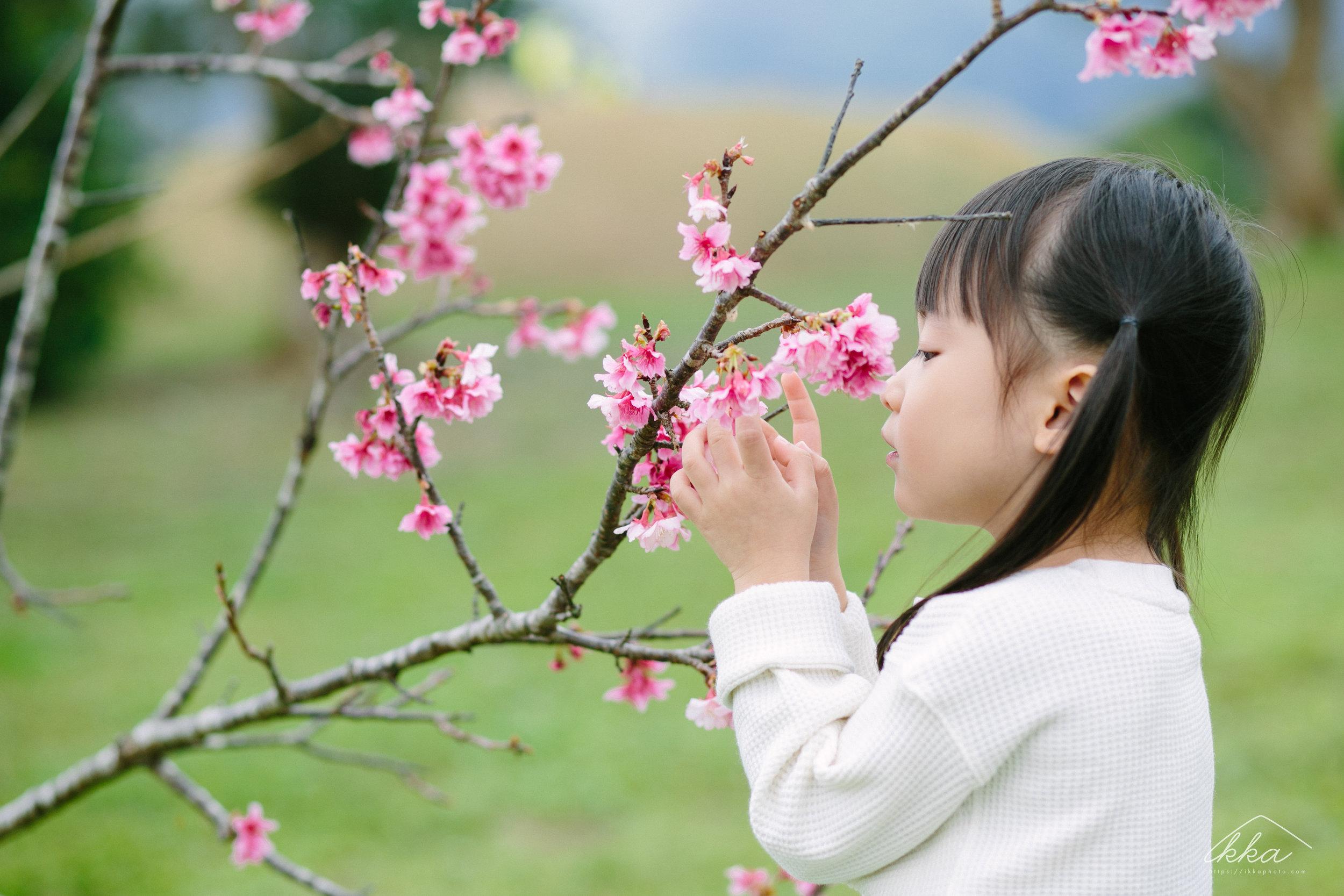 沖縄桜ファミリーフォト-4.jpg