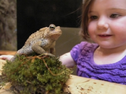 girl with frog.jpg