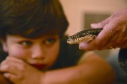 snake and boy.jpg