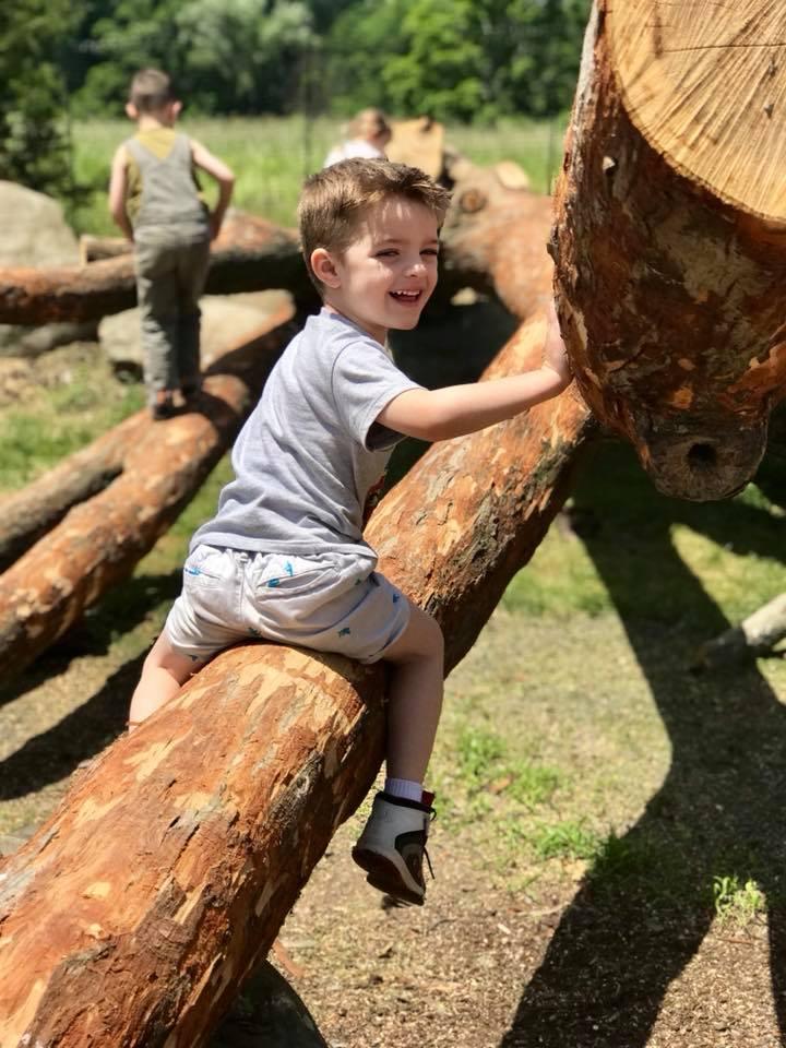 Young Naturalists Tree climb grasshopper grove Kopf (6).jpg