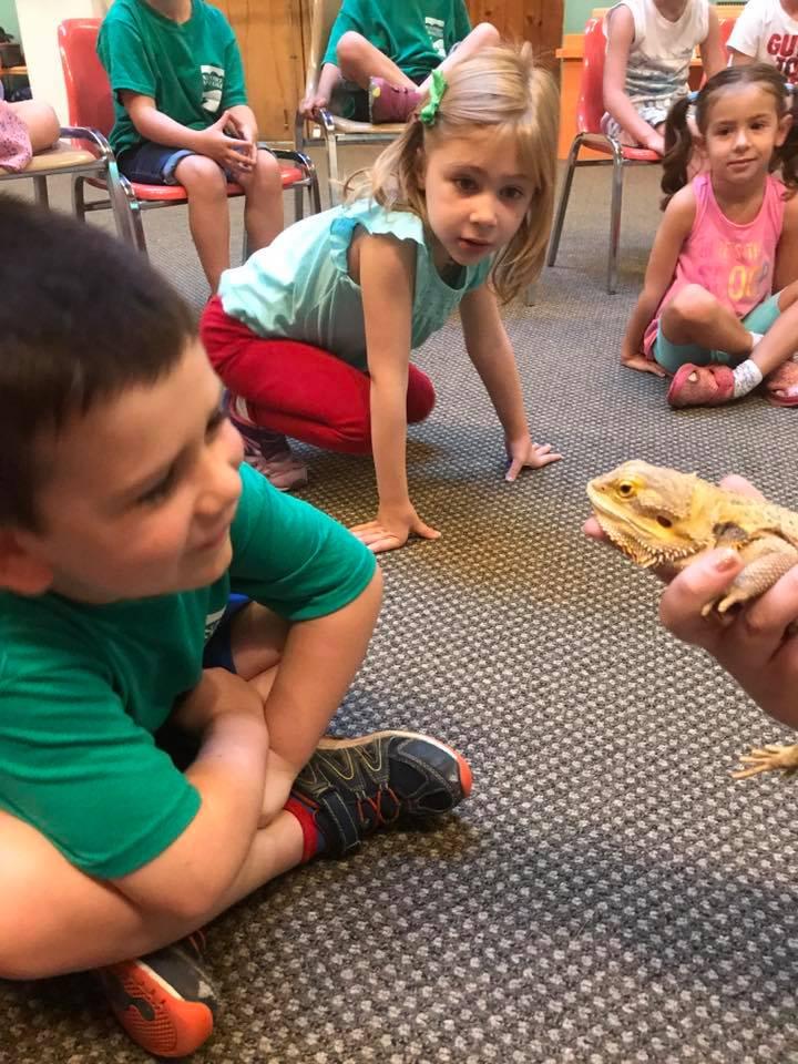 Annual report 2018 Kids meet animal.jpg