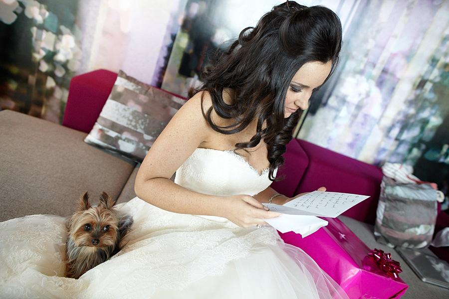 W Hoboken Wedding dog.jpg