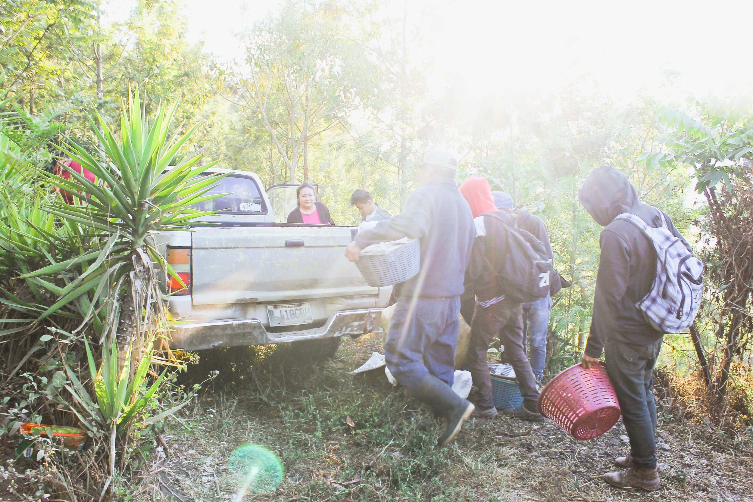 WORKERS PREPARE FOR A DAY OF WORK IN THE COFFEE FIELD ON PORÓN'S COFFEE FARM LOCATED IN LA VUELTA DE LOS PINOS ON JAN. 18. THEY STARTED THEIR CLIMB UP THE MOUNTAIN AT 7 A.M.
