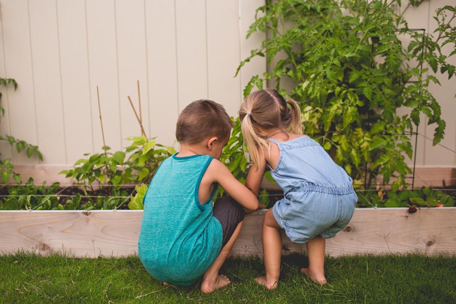 kids looking at backyard garden