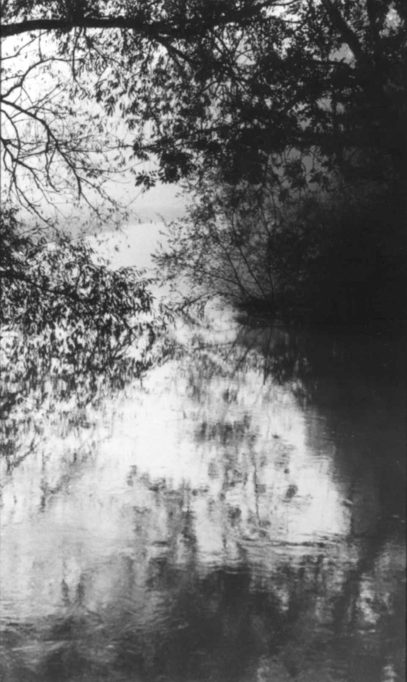 Tomio Seike, Waterscape #22