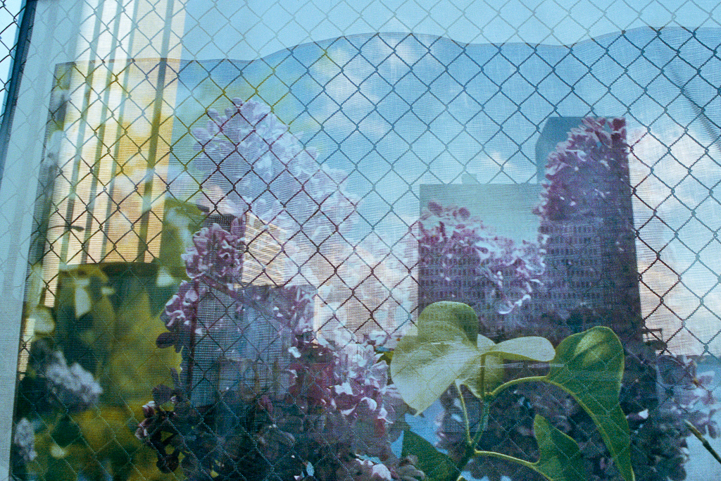 REBECCA NORRIS WEBB Lilac Festival Scrim, Main Street, Rochester, New York (from the series Memory City), 2013