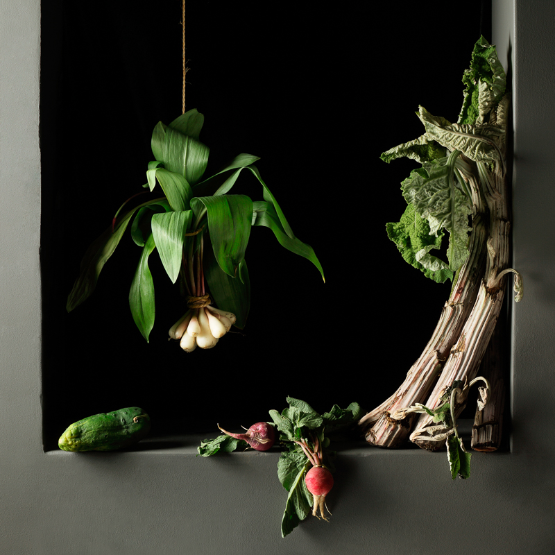 PAULETTE TAVORMINA Cardoon and Radishes, after J.S.C. (from the series Natura Morta), 2010
