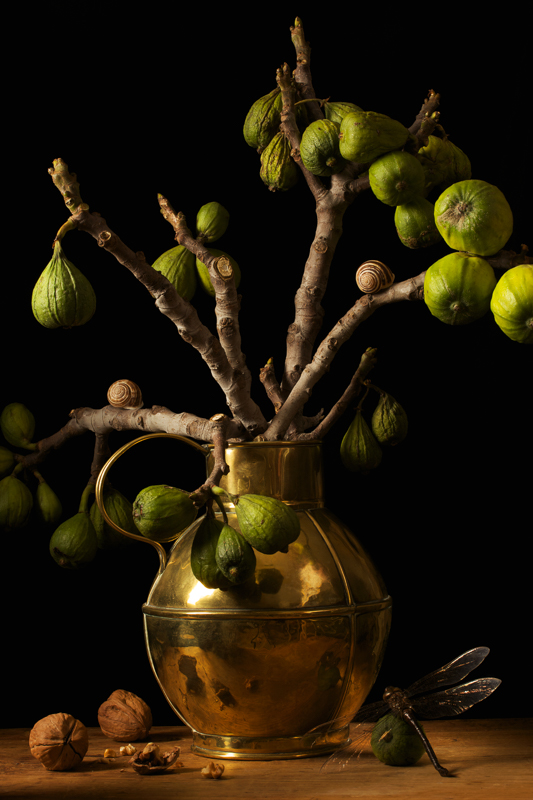 PAULETTE TAVORMINA Figs, after G.F. (from the series Natura Morta), 2009