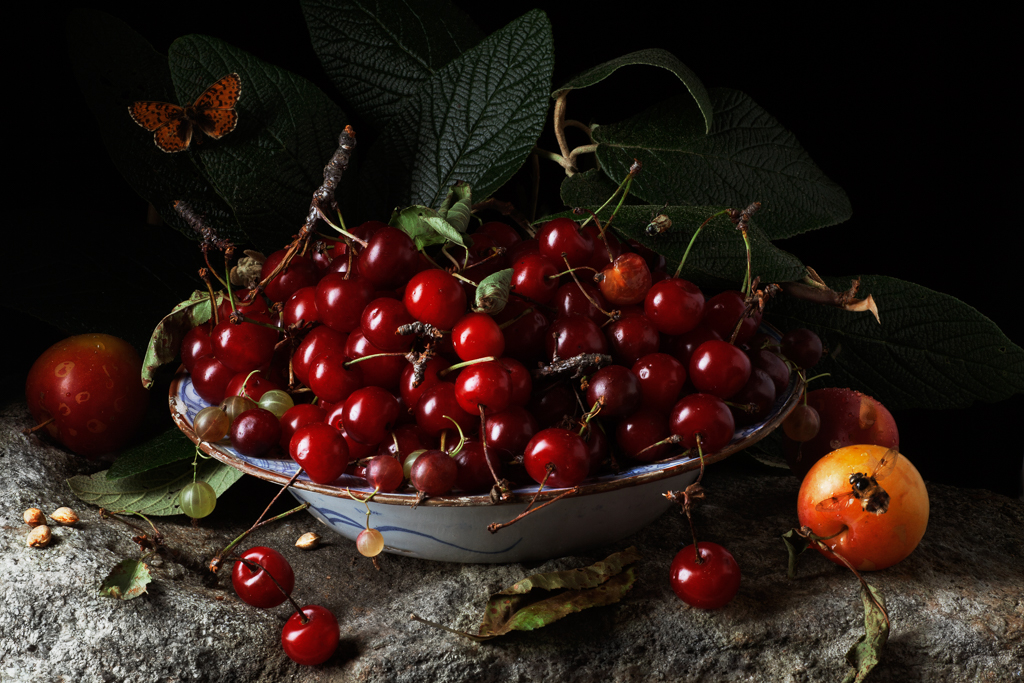 PAULETTE TAVORMINA Red Cherries and Plums, after G.G. (from the series Natura Morta), 2011
