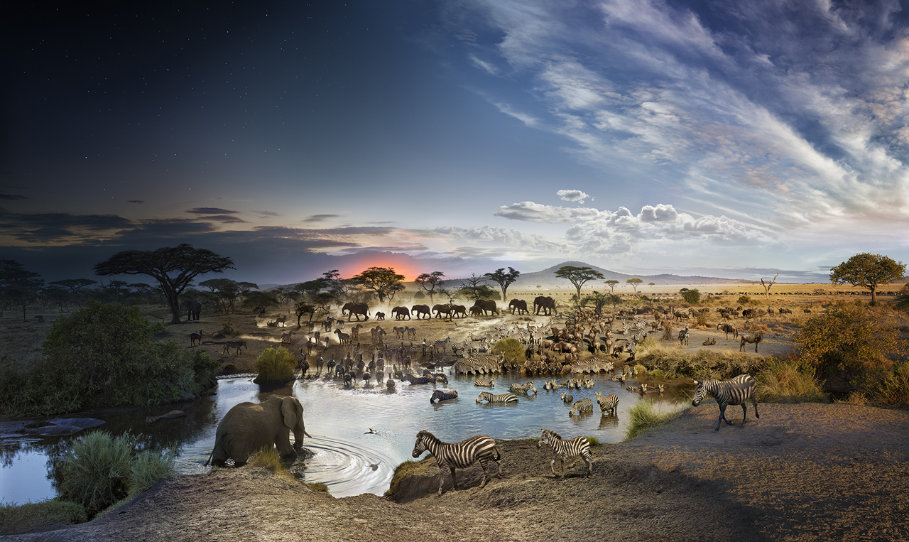 STEPHEN WILKES Serengeti National Park, Tanzania (from the series Day to Night), 2015