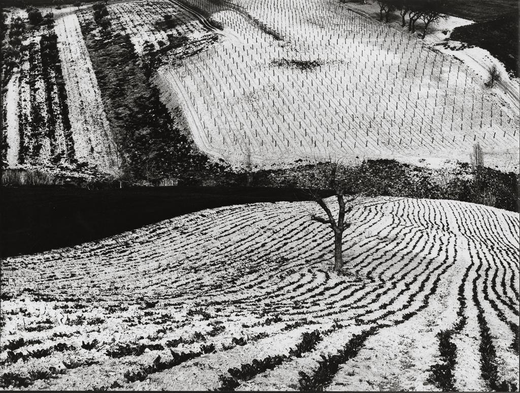 MARIO GIACOMELLI,  Paesaggio 283 , 1968