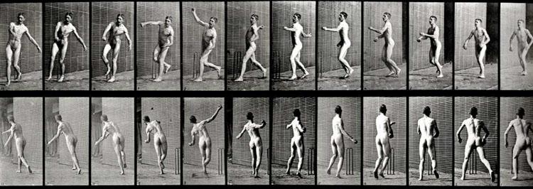 EADWEARD MUYBRIDGE, Animal Locomotion, Plate 290 (Cricket, Overarm Bowling) , 1887