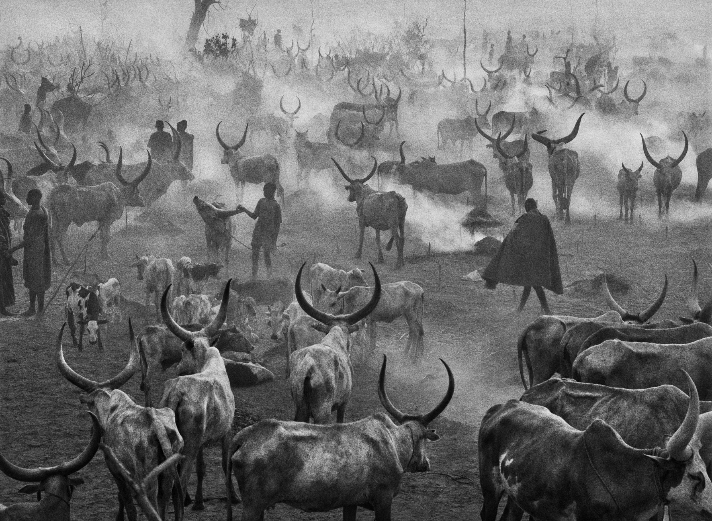 SEBASTIAO SALGADO,  Southern Sudan,  2006