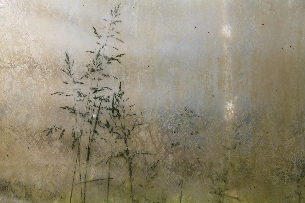 JESSICA BACKHAUS,  Still (Once, Still and Forever),  2012