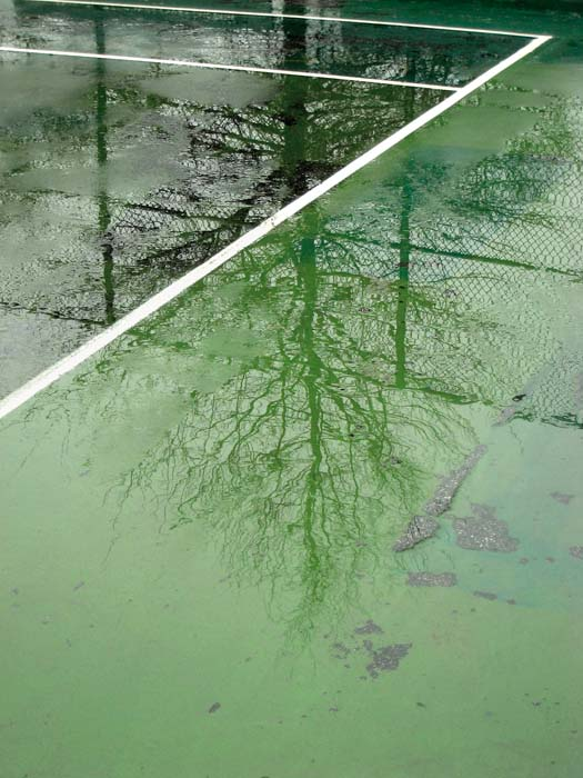 JESSICA BACKHAUS,  Greenpoint   (One Day in November) , 2008