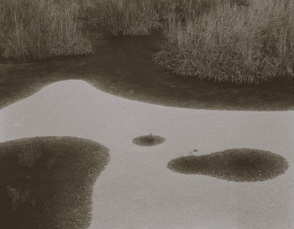 KOICHIRO KURITA,  Big Bird, Boundary Water, Minnesota,  1998