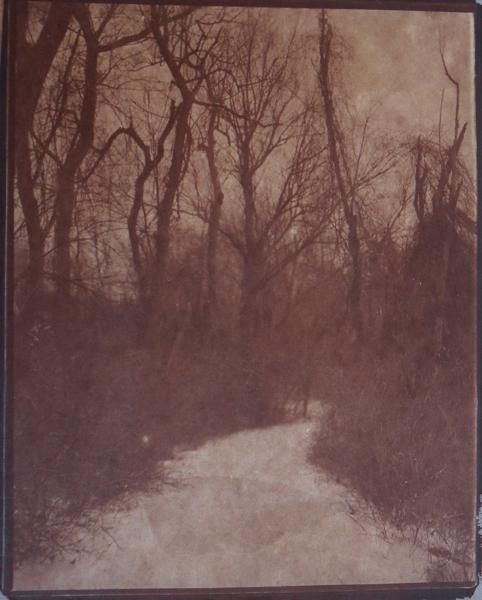 KOICHIRO KURITA,  Winter Path, Concord, Massachusetts,  2014