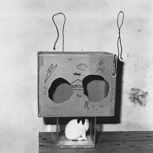 ROGER BALLEN,  Boxed Rabbit, 2002