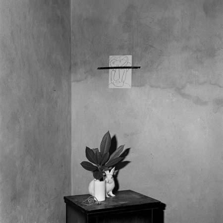 ROGER BALLEN,  Prickles, 2002