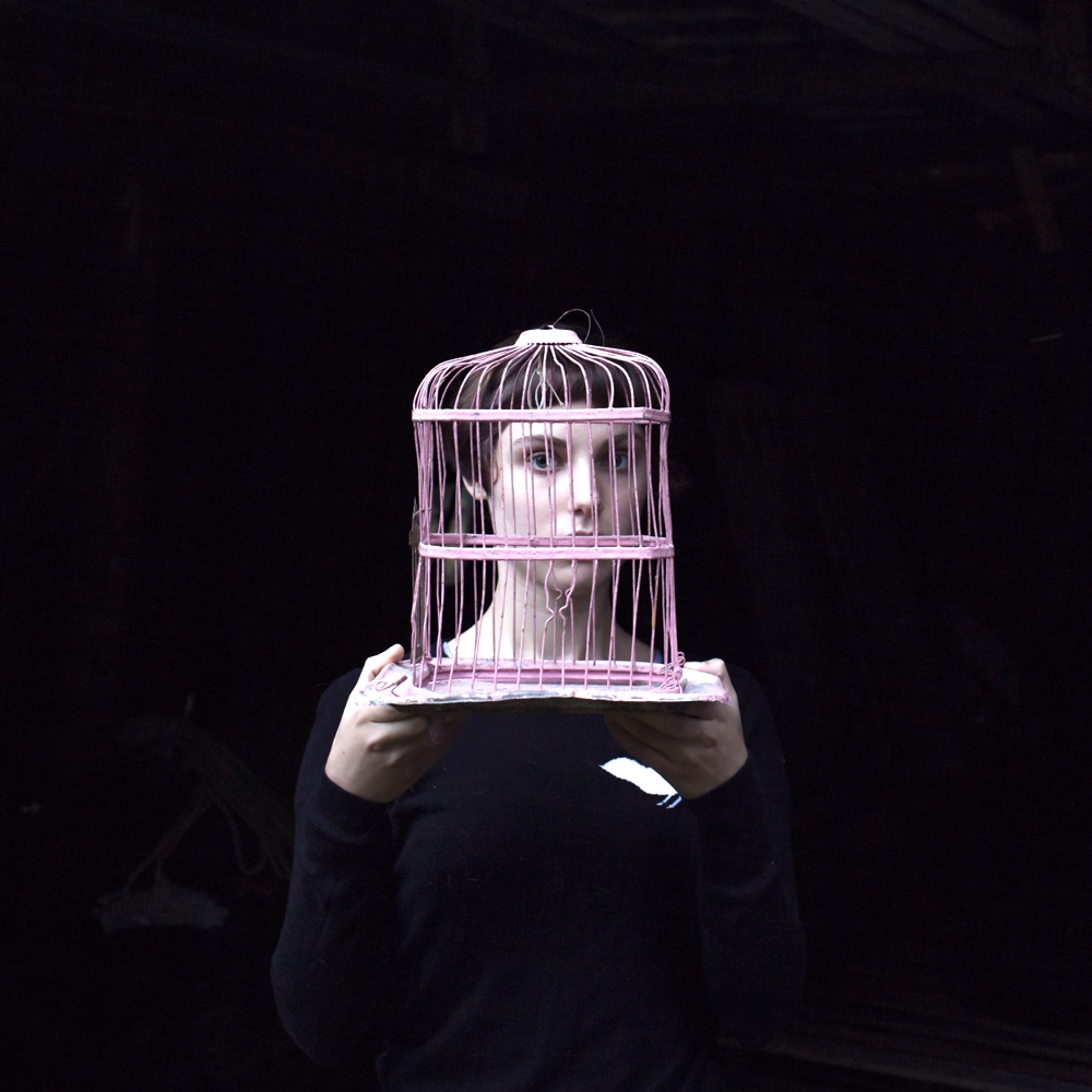 CIG HARVEY,  Sadie & the Birdcage , 2013