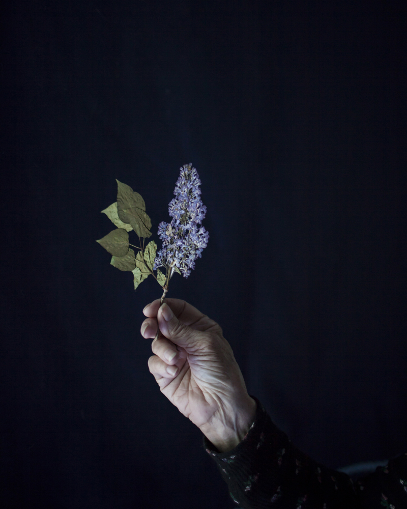 CIG HARVEY,  Mum Holding Pressed Lilacs,  2018