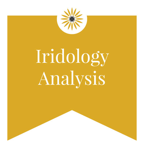 iridology analysis