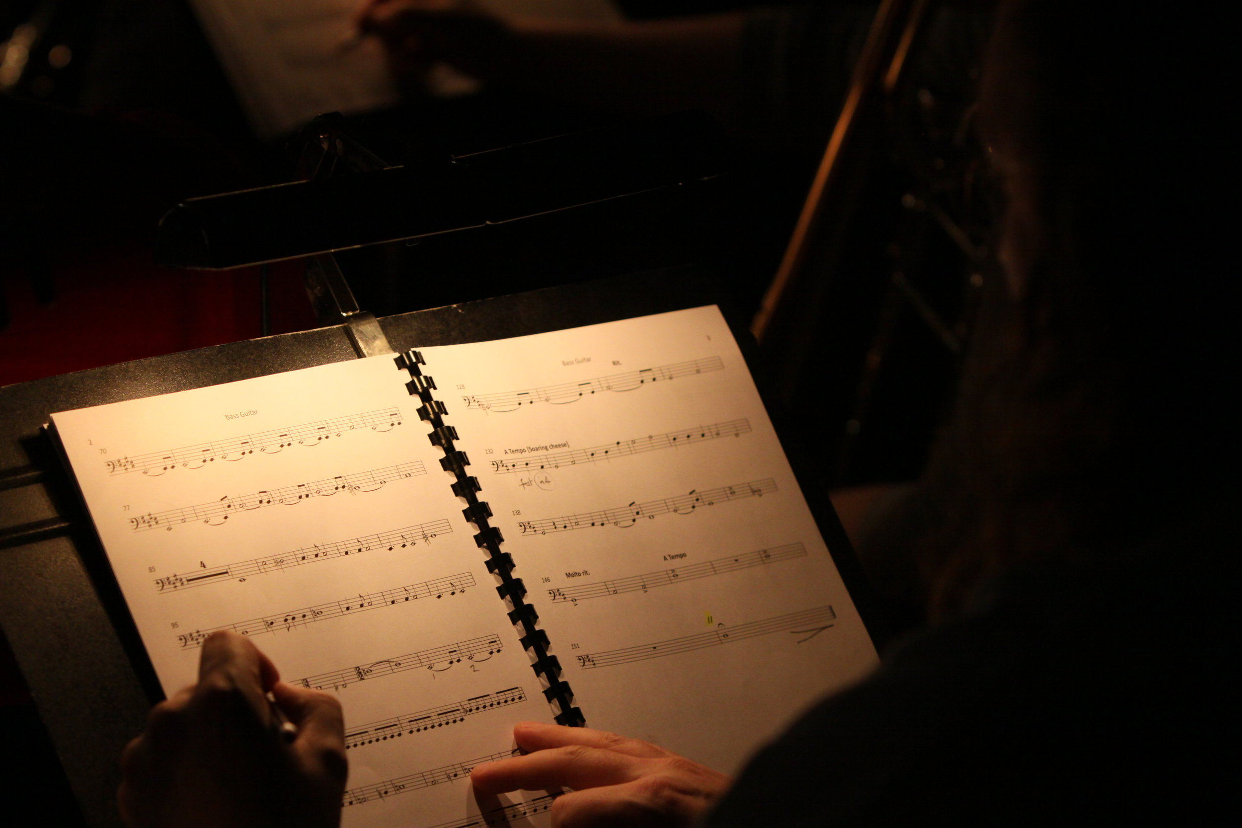 The Forbidden Fruit orchestra, Brighton Festival, Brighton Dome, composed by Jude Obermüller (photo by Sarah Sutherland-Rowe)