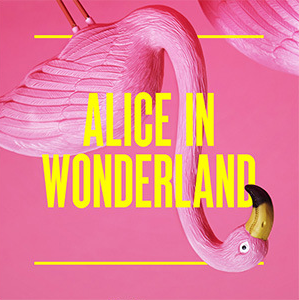 Composer for Alice in Wonderland, Storyhouse, Chester, UK, May-August 2017   Jude was commissioned to write a new score for Alice in Wonderland, to open the brand new  Storyhouse  in Chester, UK, which ran from May-August 2017. The show transferred to the revamped Grosvenor Park Open Air Theatre for the second half of the run.