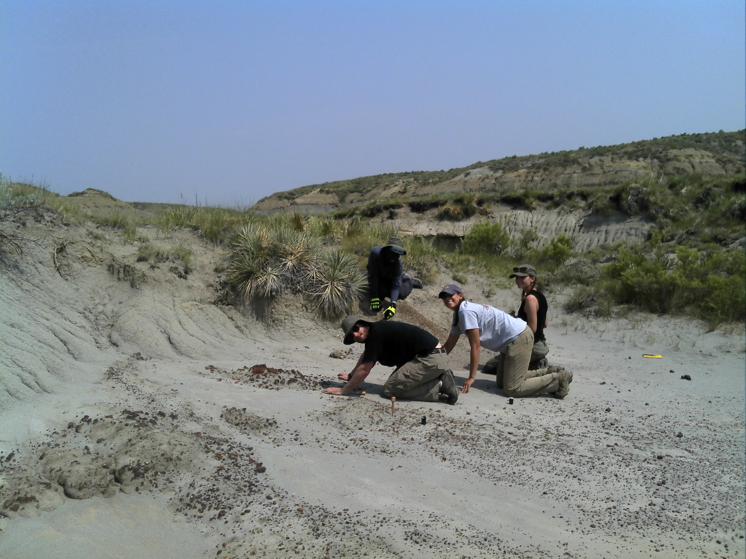 2015 Students and grad student Alex Brannick crawling a microfossil locality hunting for mammals!