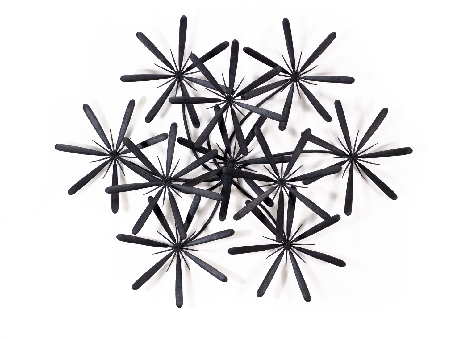 Round Tipped Black Raw Wall Flower, 2013