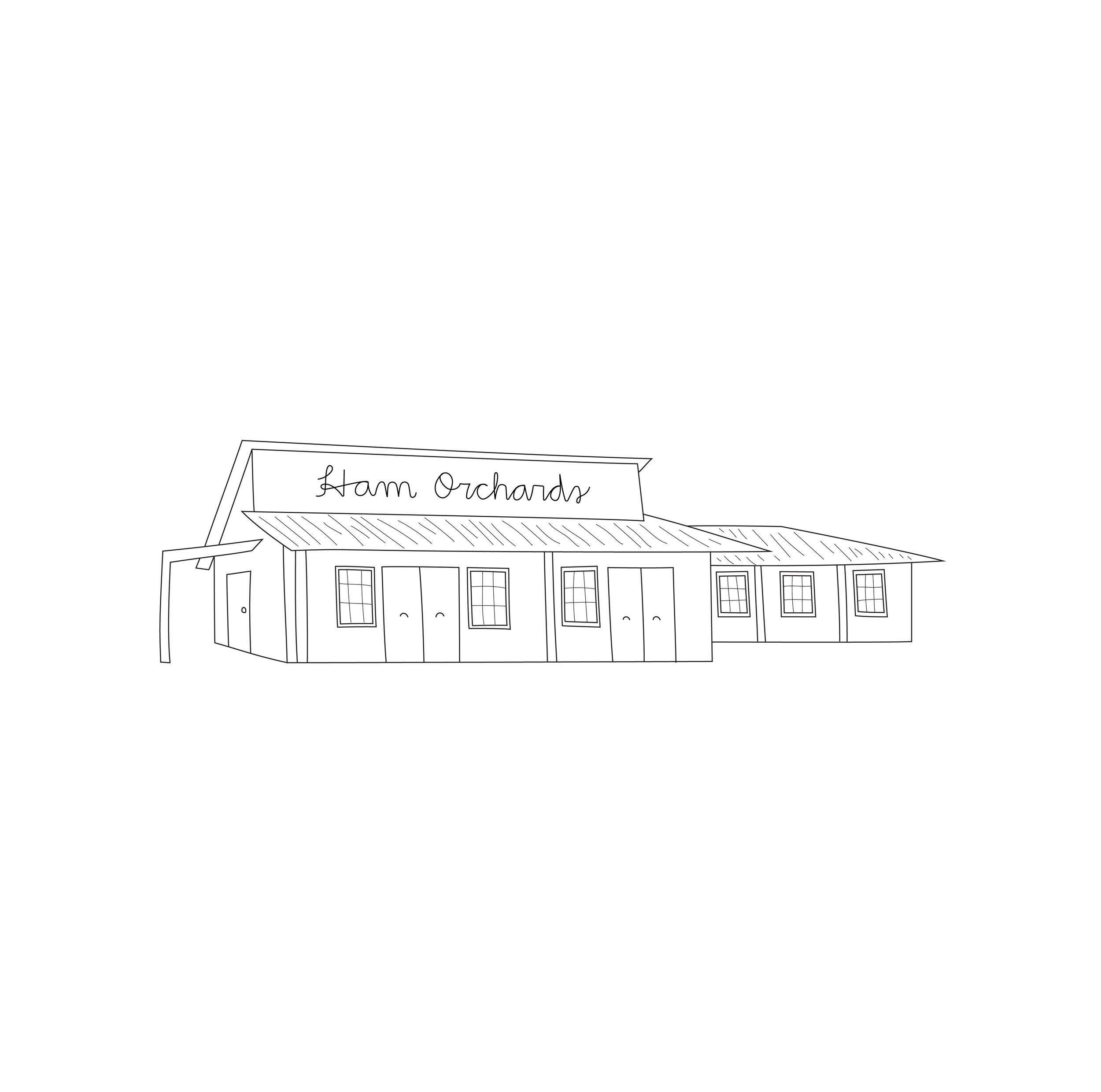 ham orchards_building illustration.jpg