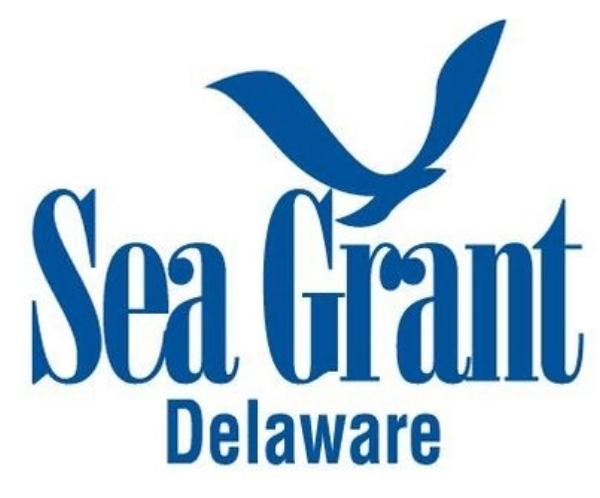 DSG_logo.jpg