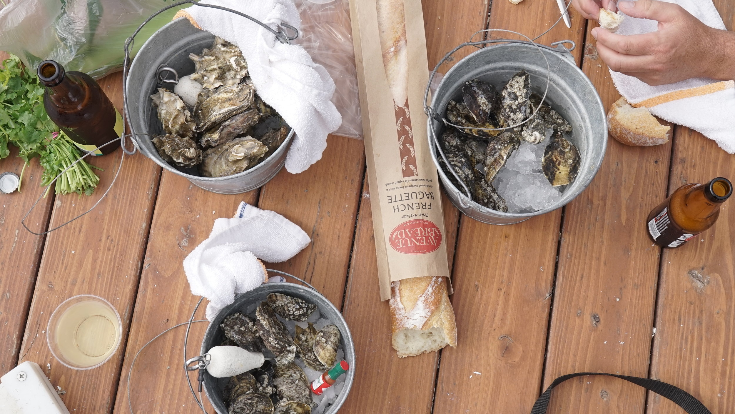 A little afraid of your knife skills? Don't worry, Taylor Shellfish tells you exactly  how to shuck an oyster .