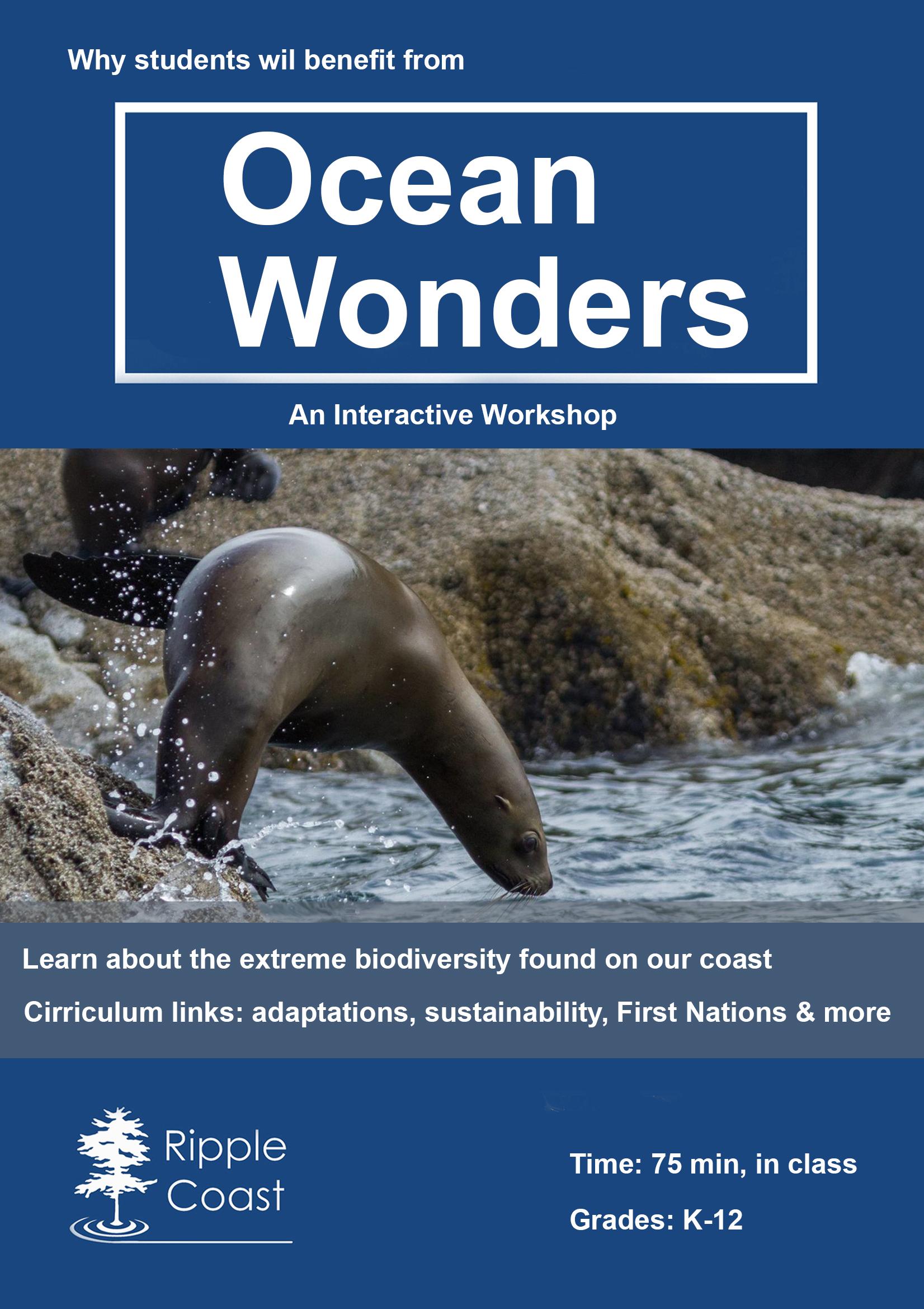 oceanwondersschoolposter_whybook.jpg