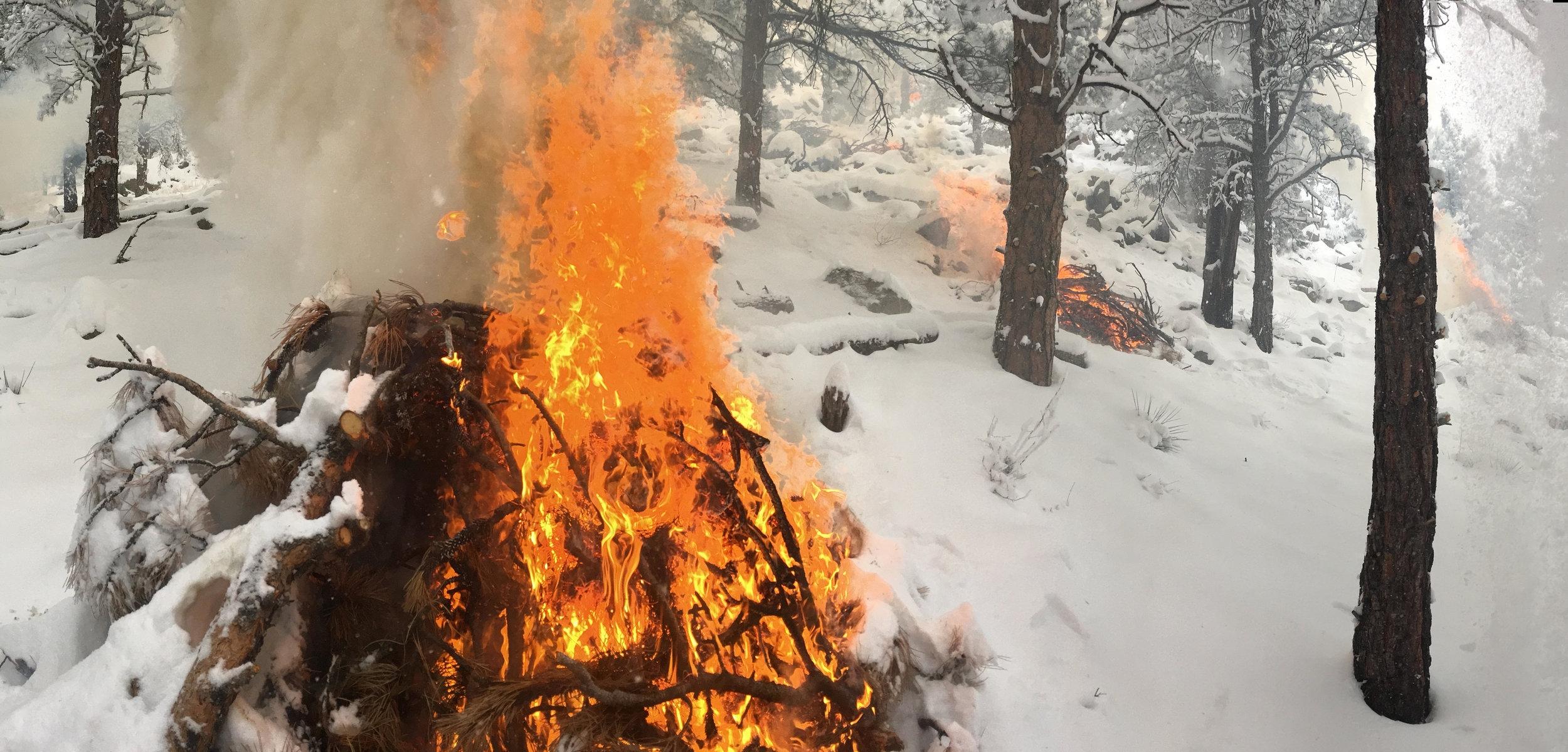 Slash Pile Burning