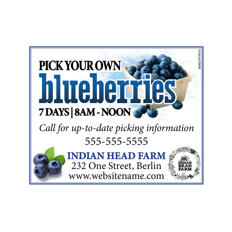 blueberry_ad.png