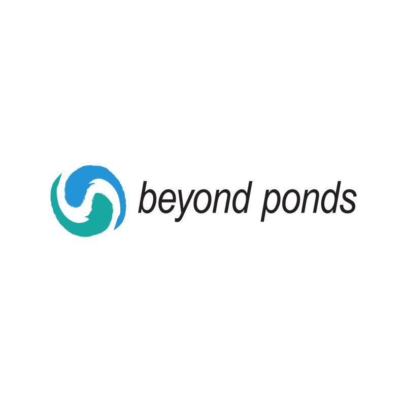 beyond_logo.png