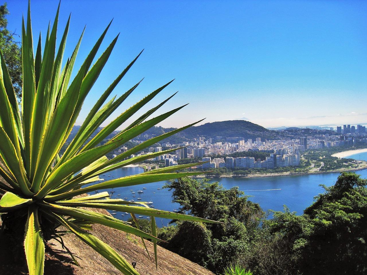 Architectural Rio - Private Tour.jpg