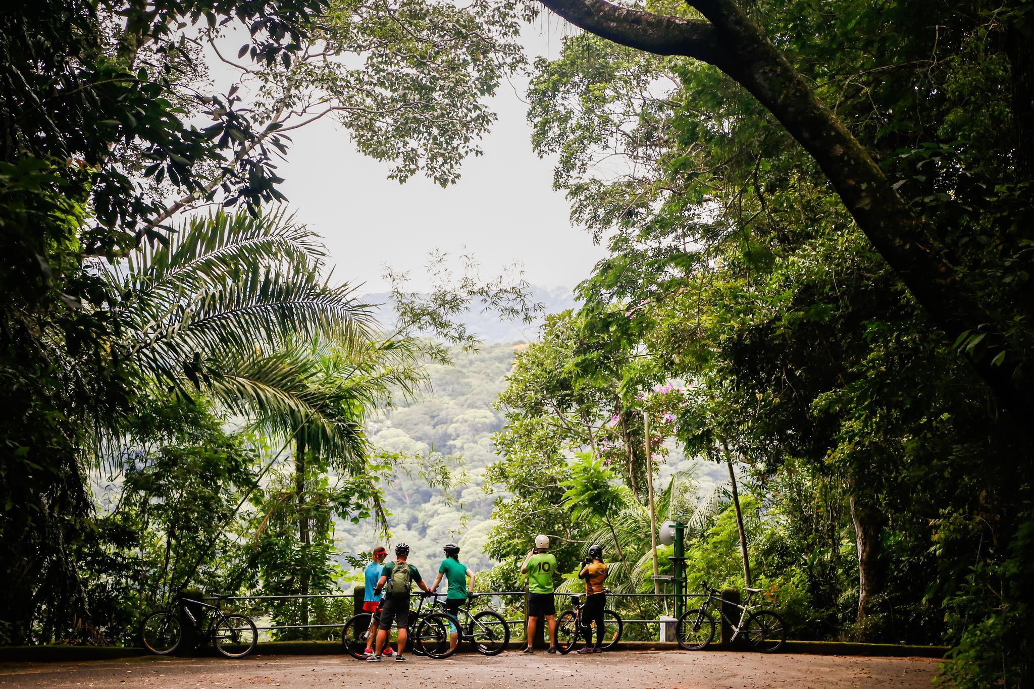 Rio-jungle-bike-tour.jpg