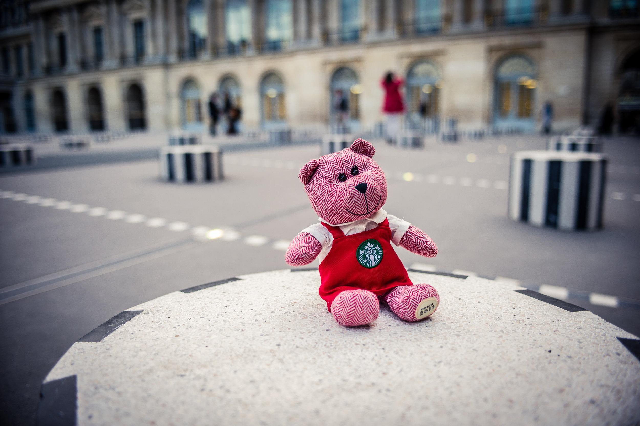 traveling barista bear paris 1.jpg