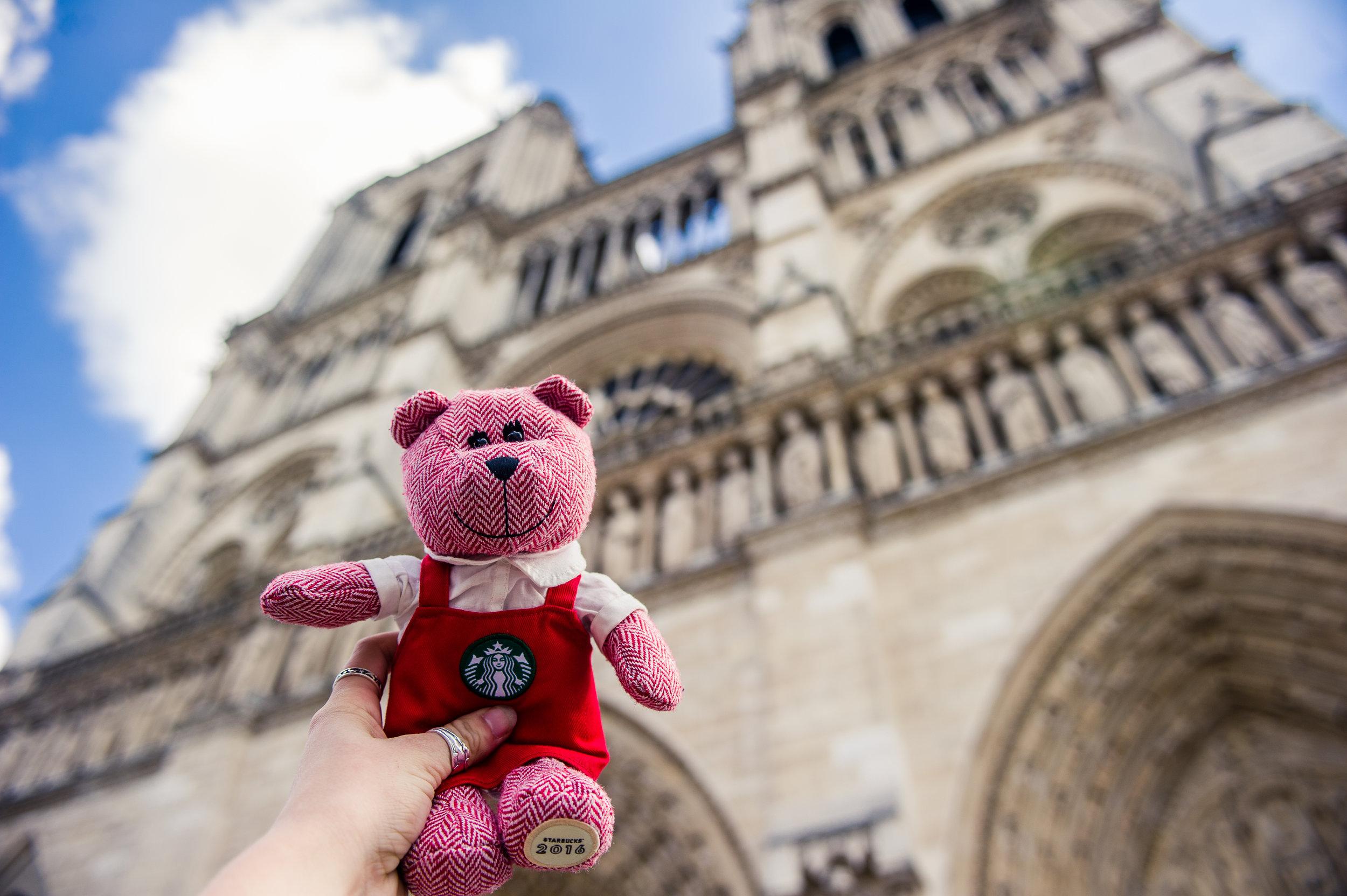 traveling barista bear paris 6.jpg