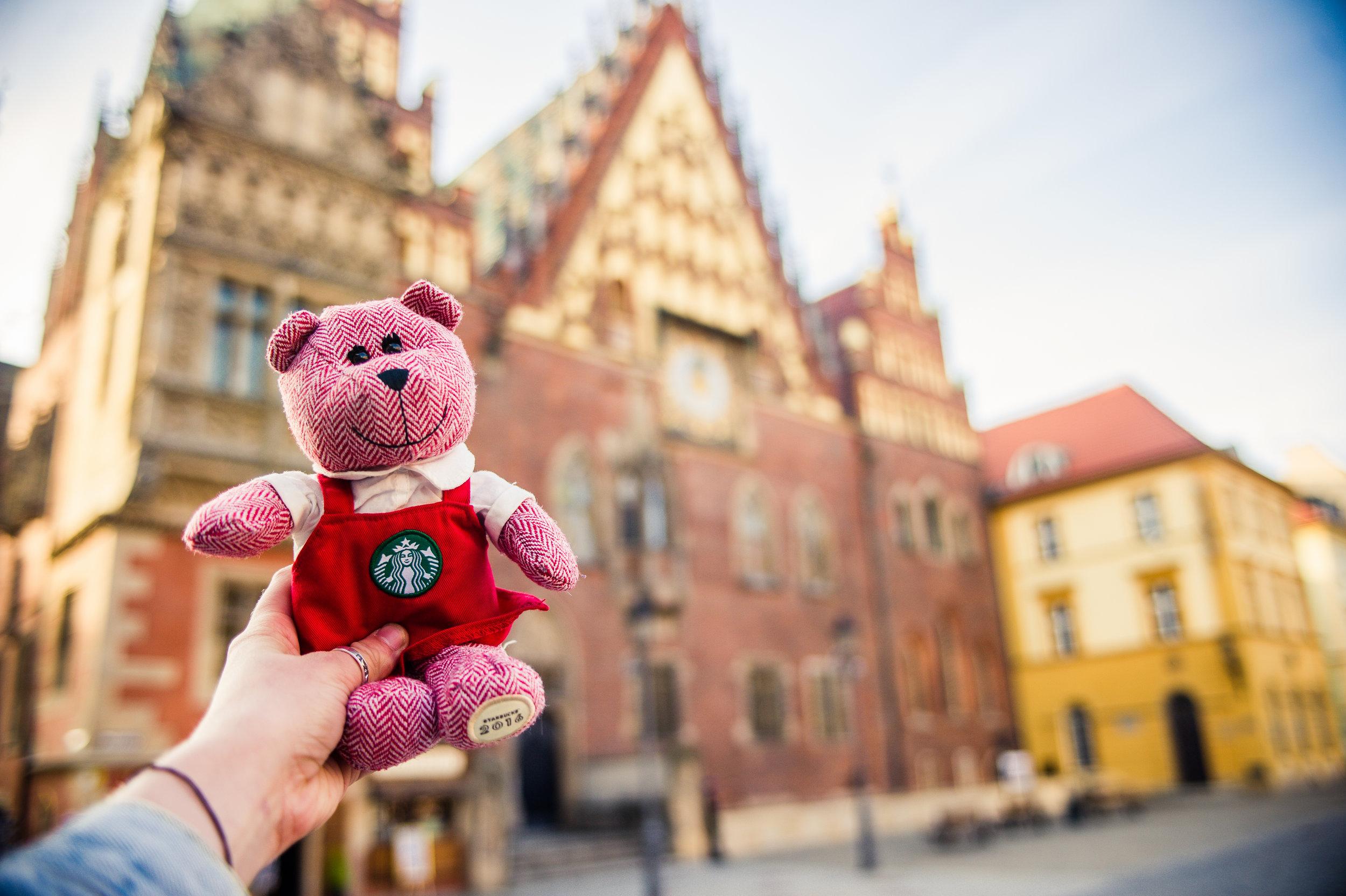 traveling barista bear poland 1.jpg