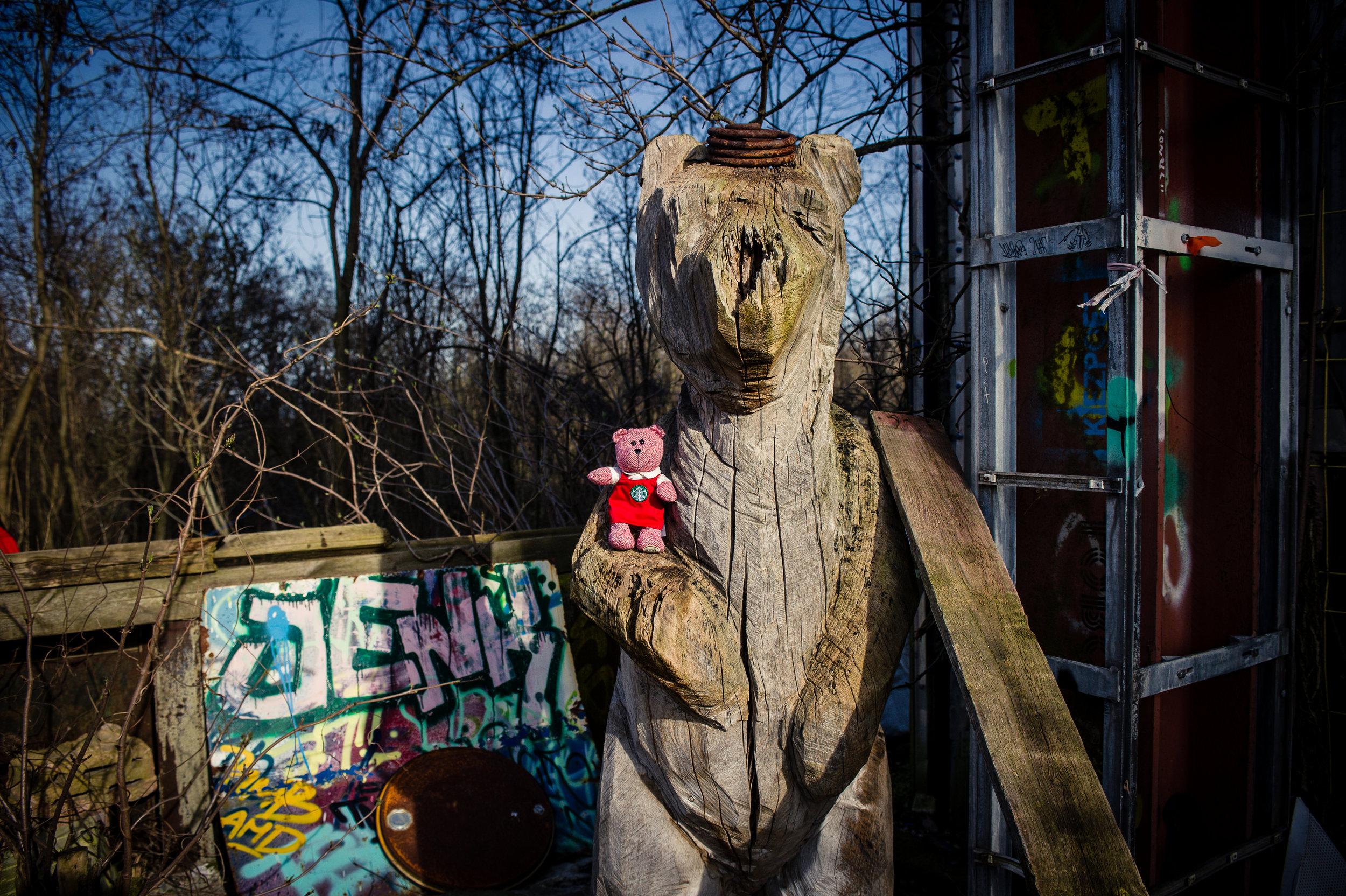 traveling barista bear teufelsberg-2.jpg