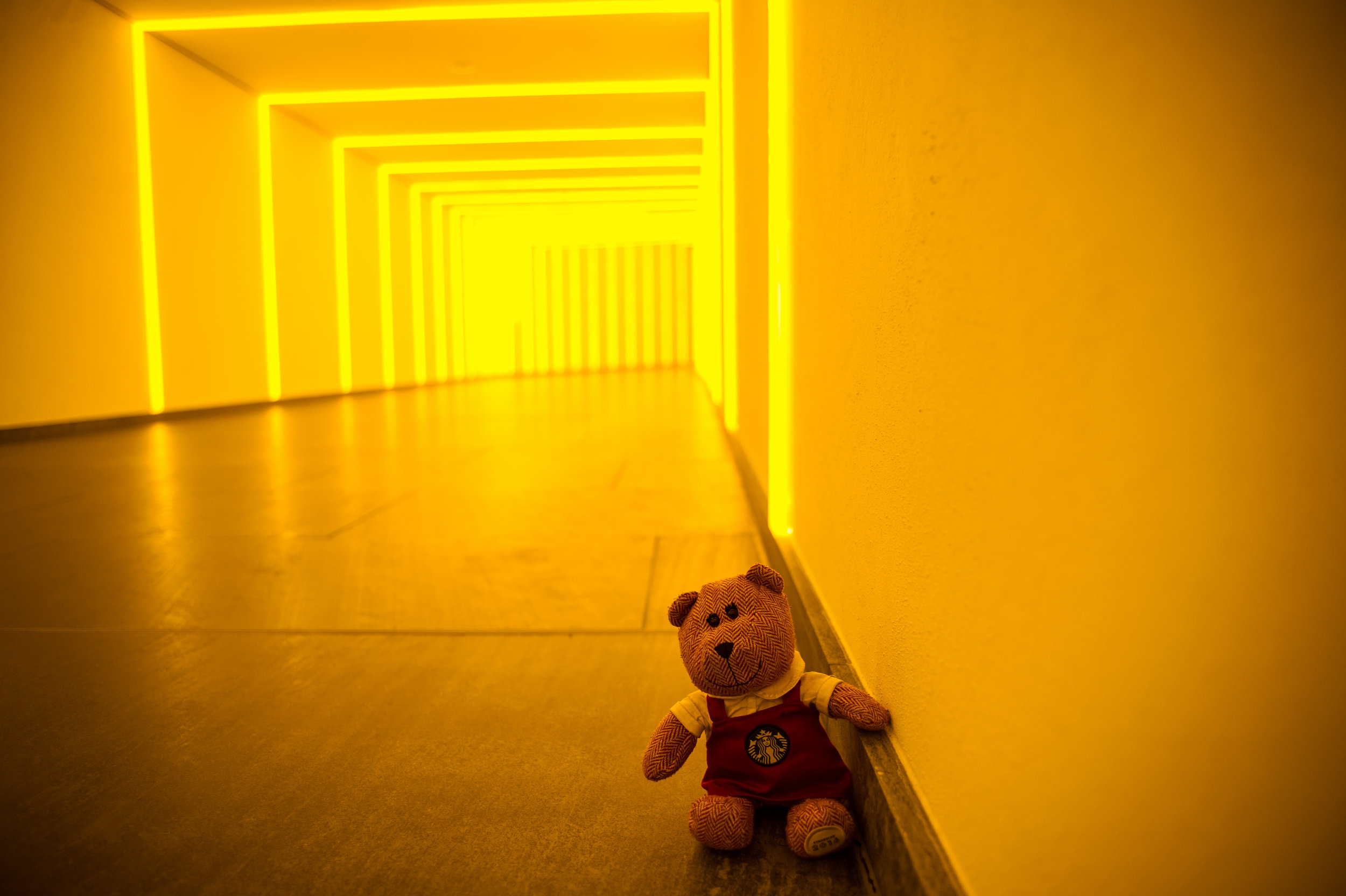 traveling barista bear berlin-6.jpg