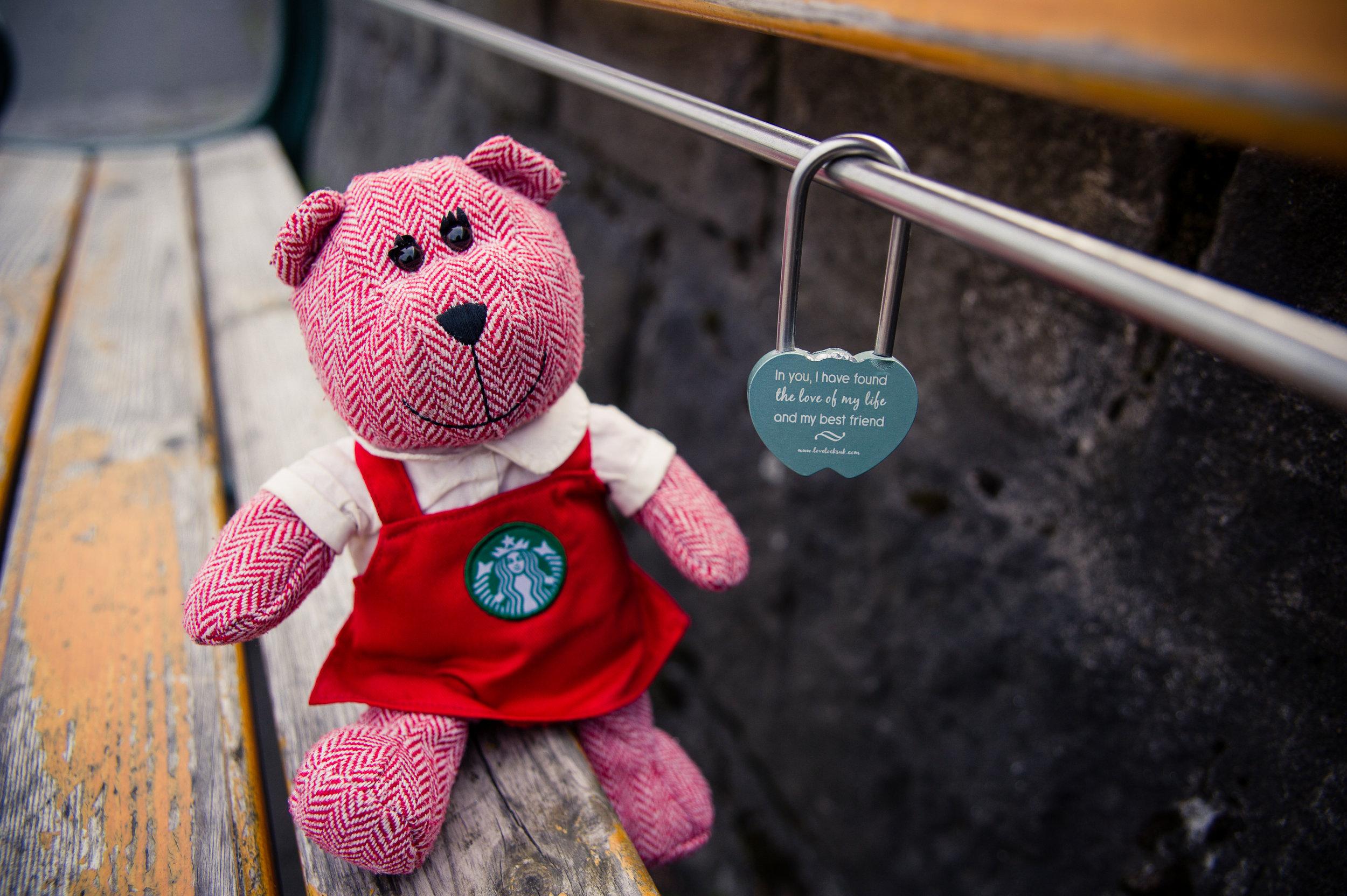 traveling barista bear iceland 2.jpg